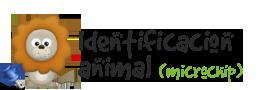 Identificación animal